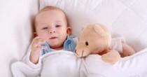baby_teddi_bear_rashi