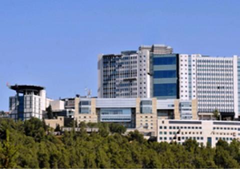 בית חולים הדסה עין כרם ד. הדסה