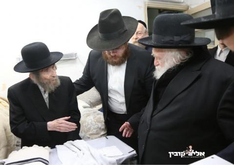 הרבנים שטיינמן קנייבסקי קובין