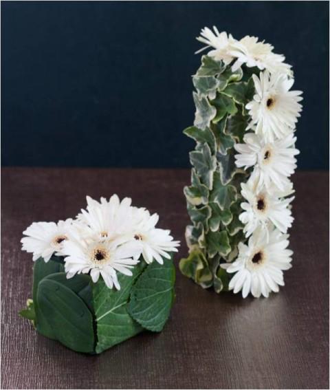 פרחים גליקסברג