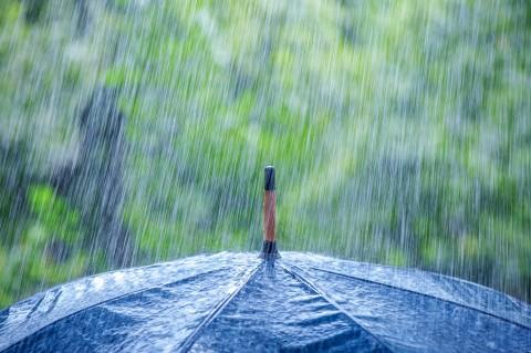 גשם מטריה