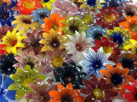 שלל פרחים דרור חפר