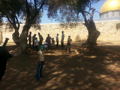 ילדי קייטנת חמאס בהר הבית צילום הליבה (2)