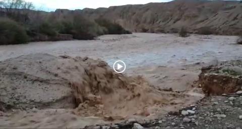 מים גשם