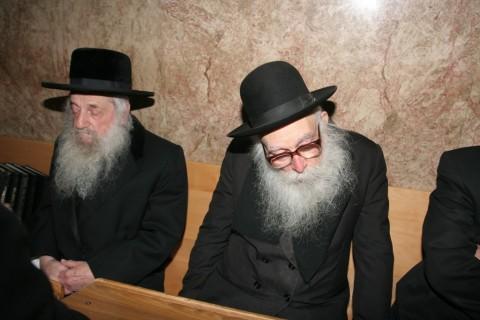הרב וואזנר קרליץ