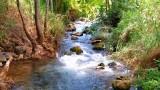 קליגר נהר בניאס