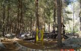 יער בן שמן 007