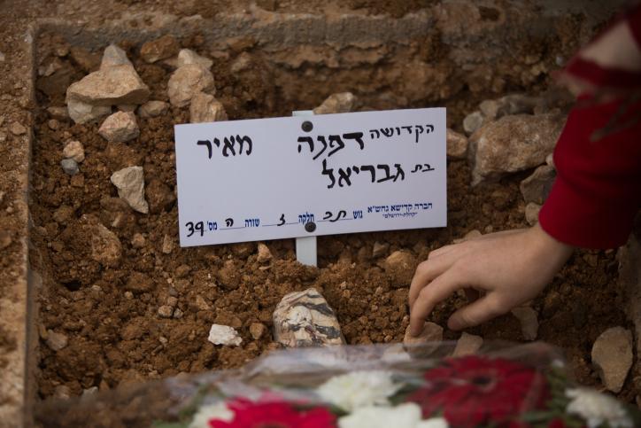 קבר דפנה מאיר
