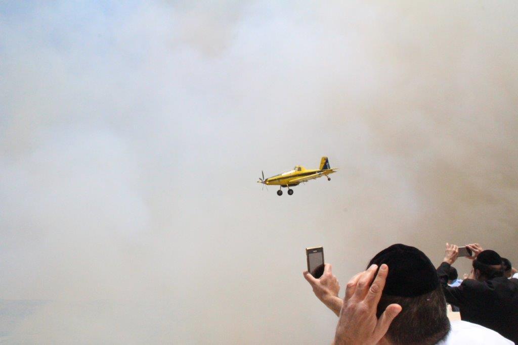 שריפה יער ירושלים (14)