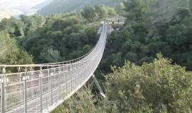 גשר החבלים בחיפה