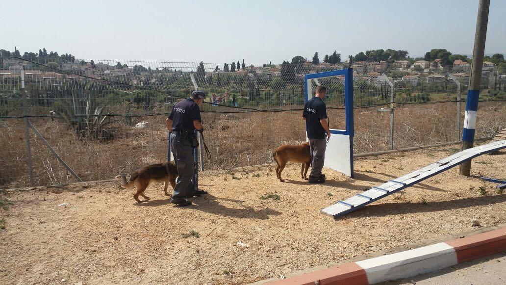 כלבי משטרה