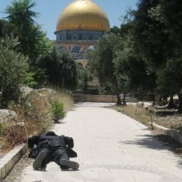 יהודי משתחווה בהר הבית
