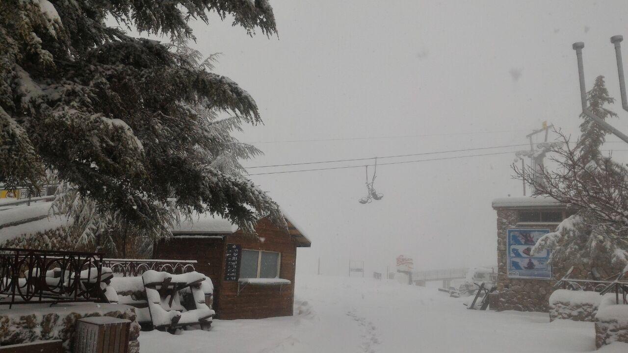שלג חרמון