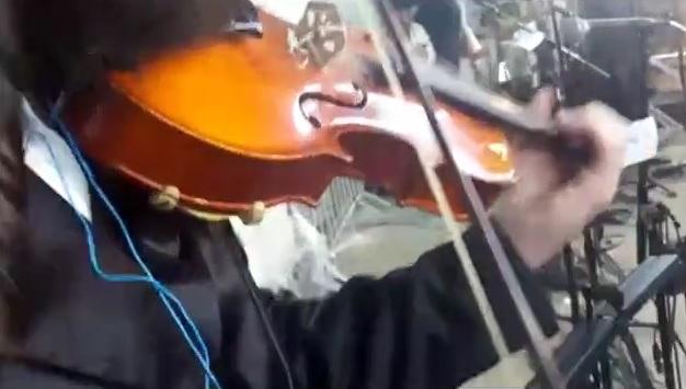 מירון כינור