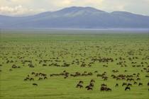 נוף בטנזניה