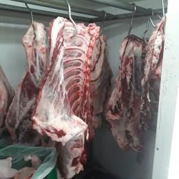 חלק מהבשר שנתפס