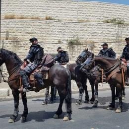 שוטרים פרשים ירושלים
