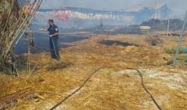 שריפה קוממיות 02