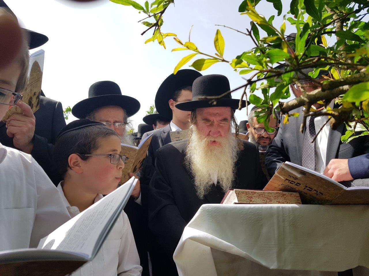 הרב מרדכי גרוס