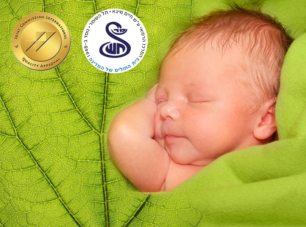 shiba_Natural_childbirth_yahatz