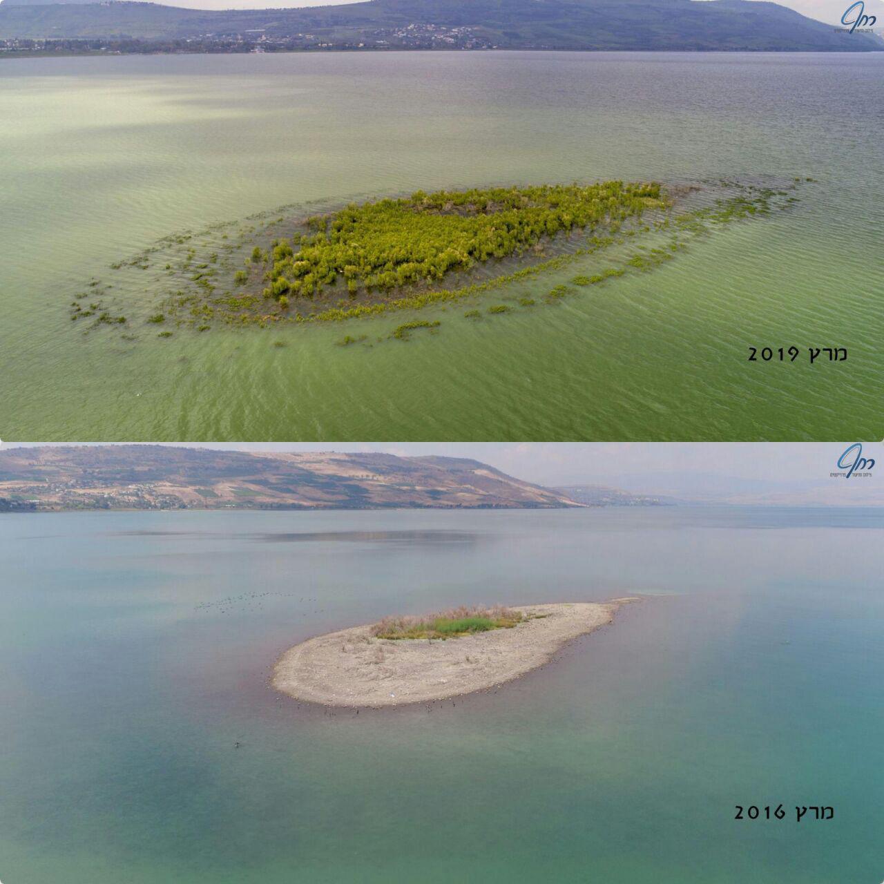 האי הנעלם בכינרת