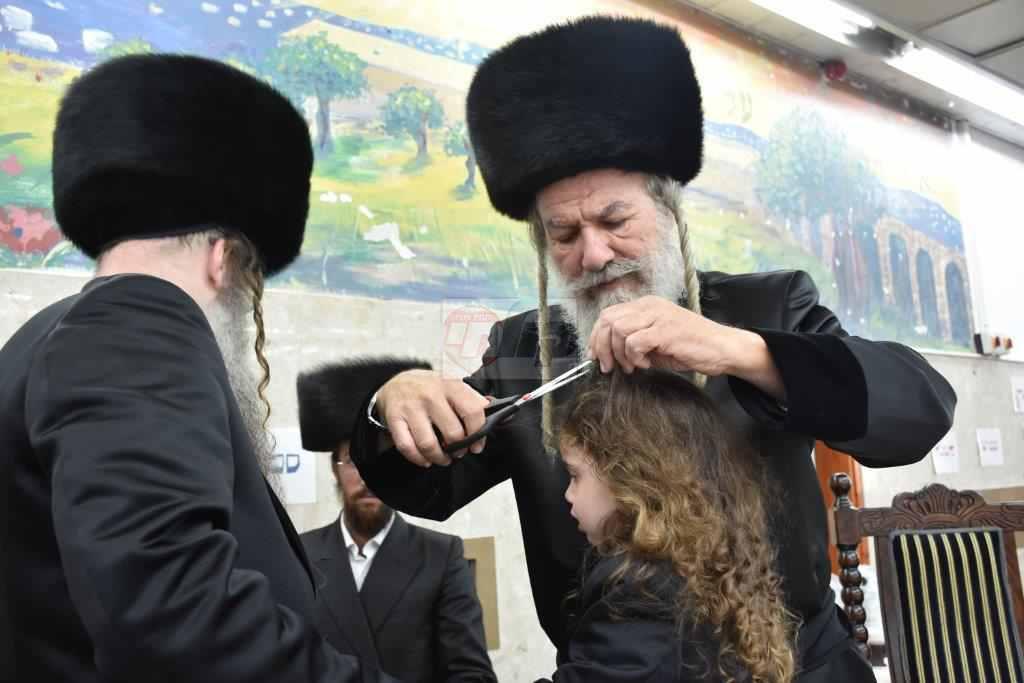 אשלג במירון צילום יהודה פרקוביץ (6)