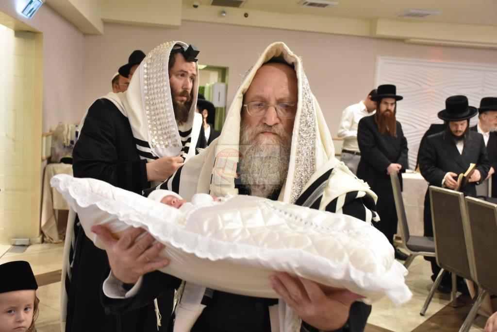 ברית ז'מיגראד צילום יהודה פרקוביץ (2)