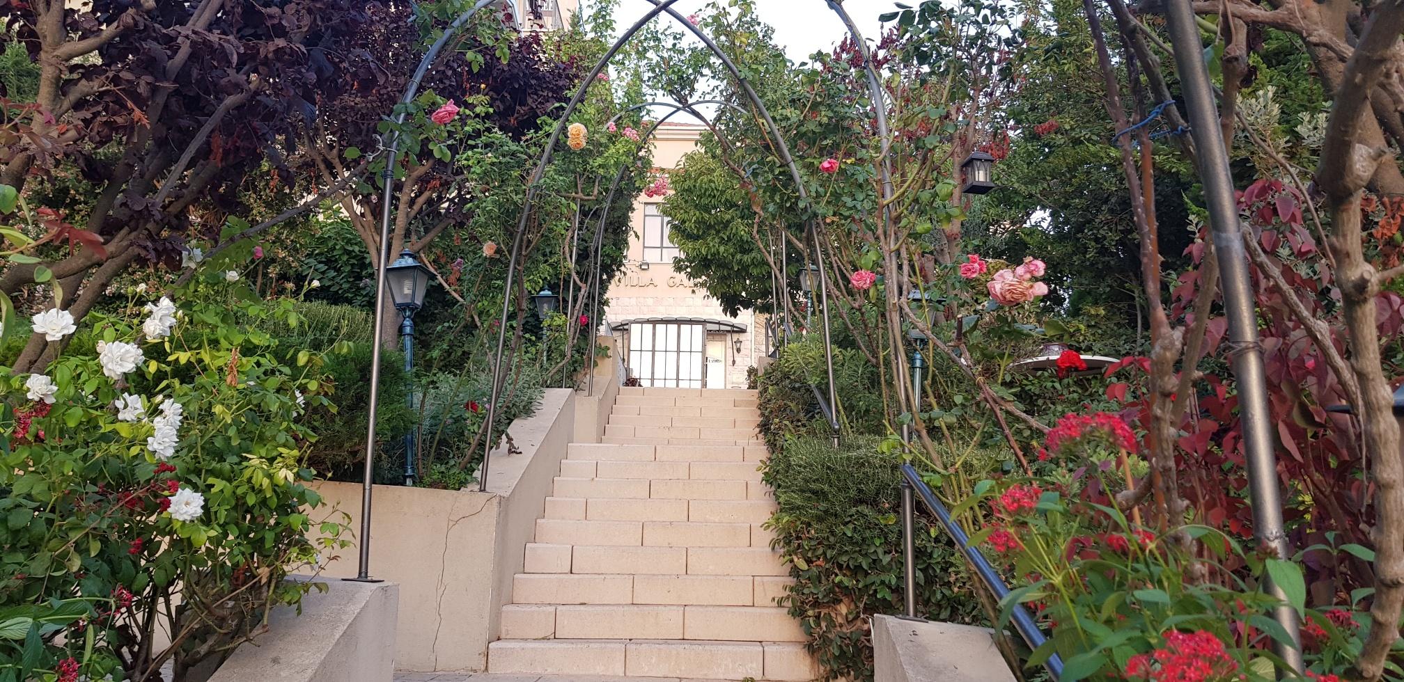גן פורח במלון