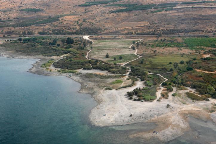 חוף כינרת