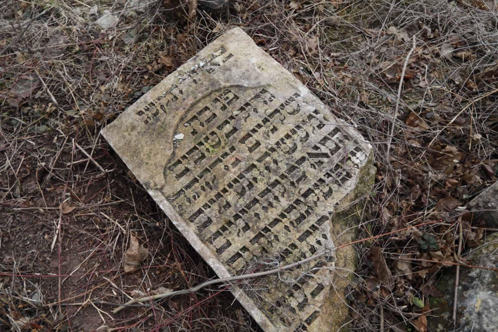 מסע הרב שפירא צילום יעקב נחומי (13)