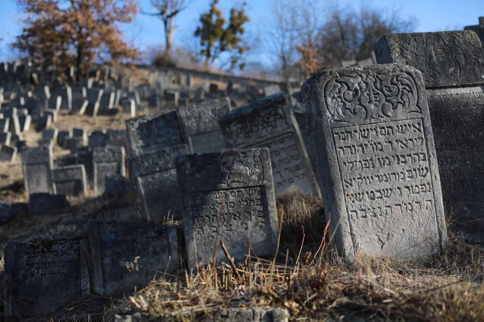 מסע שפירא יום ג' צילום יעקב נחומי (4)