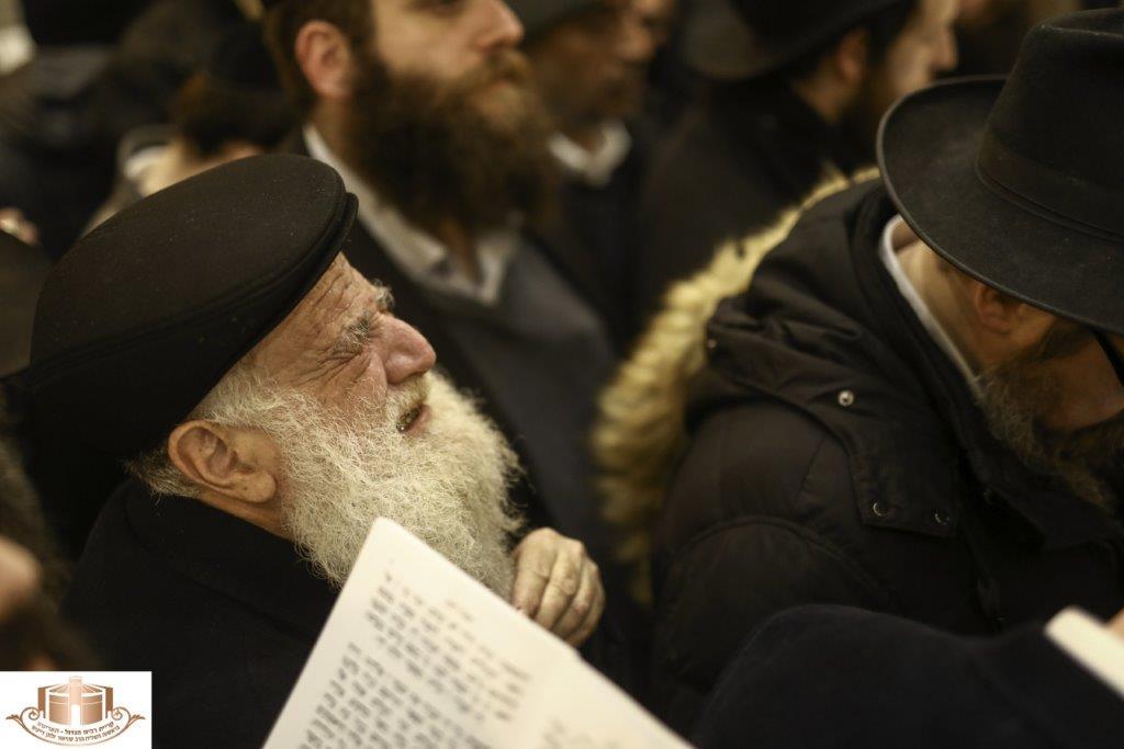 האדיטש תש''פ בעל התניא צילום שלומי כהן (50)